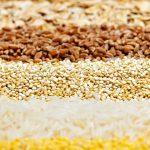 Brasil assumirá dianteira na produção de grãos